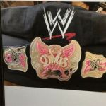 Wwe Divas Belt for Kids Inspired 11 Best Wwe Divas Championship and Wwe Women S Champion Both Raw and