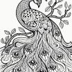 Zen Coloring Pages for Adults Inspired Peacock Coloring Pages Beautiful Advanced Peacock Coloring Pages New