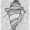 Zentangle Coloring Pages Inspired Lighthouse Coloring Pages Free Inspirational Zentangle Shell Adult