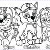 Zuma Paw Patrol Coloring Page Brilliant Paw Patrol Coloring Pages for Kids